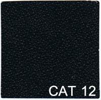 CAT 12 copy