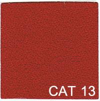 CAT 13 copy