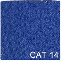 CAT 14 copy