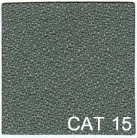CAT 15 copy
