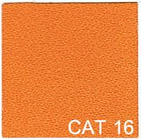 CAT 16 copy