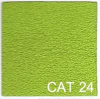 CAT 24 copy
