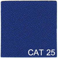 CAT 25 copy
