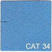 CAT 34 copy