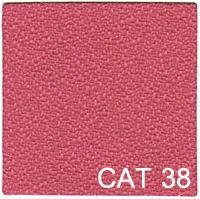 CAT 38 copy
