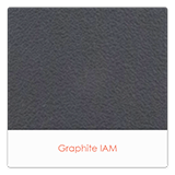 Graphite-IAM
